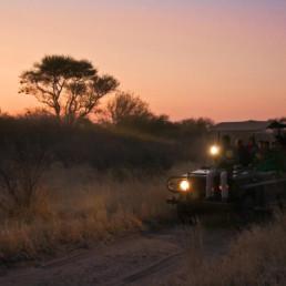 deception valley night time safari